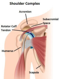 omplex.  Shoulder impingement syndrome develops when there is a narrowing of the subacromial space