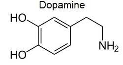 Low dopamine levels can cause restless limb syndrome