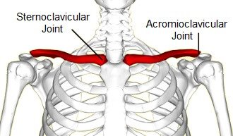 Collar Bone Pain Common Causes Of Clavicle Pain